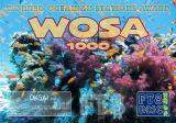 DK5AI-WOSA-1000_FT8DMC